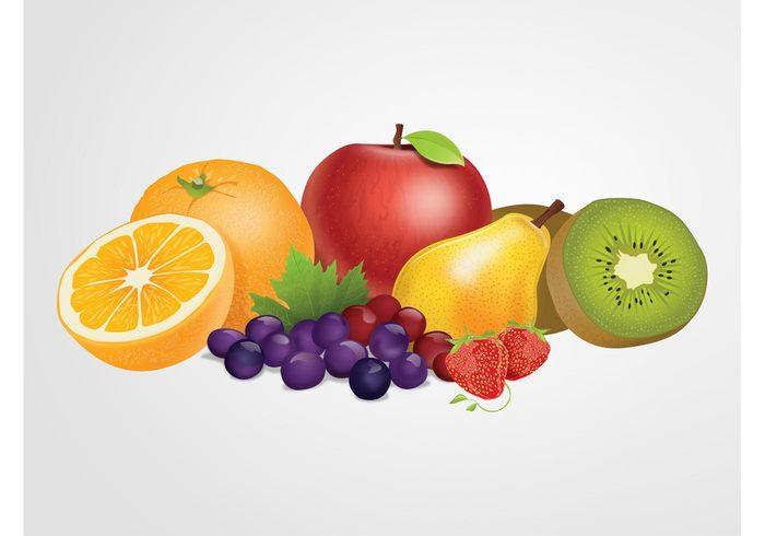 vitamins Tasty strawberries Ripe pear oranges nature Kiwis Healthy grapes fruits fresh Diet detailed delicious Cartoons apple