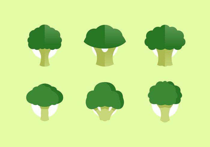 veggies veggie vegetarian vegetables minimal light icon gardening garden fresh veggie fresh food fresh food flat Diet crop broccoli isolated broccoli