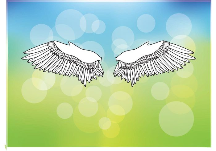 Wings vector Vector shape vector background summer spring modern flying fly feather emotion drawing beautiful