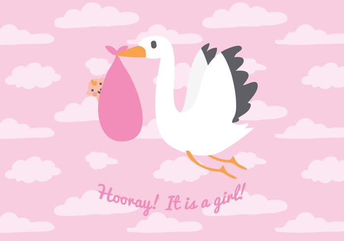 stork sky it's a girl hooray girl boy bird babysitting babysitter baby girl baby animal
