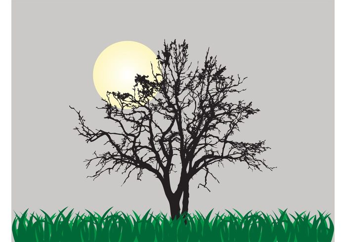 vector background sun silhouette plants old nature moon lush grass fresh field dry Crooked branches
