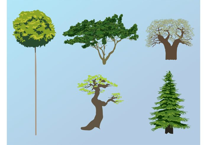 vector trees trunks trees stickers plants organic nature natural leaves forest ecology eco crowns bark