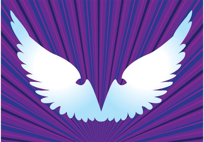 wings wing sky psychedelic high Footage flying fly flight design element clip art birds bird backdrop animal angel