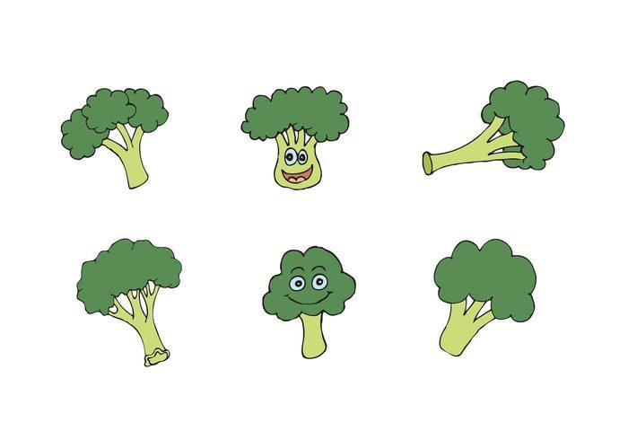yum veggie vegetarian vegetables vegetable vegan hungry hunger health green fresh veggie fresh vegetable food eat diet food cartoon broccoli isolated broccoli cartoon broccoli