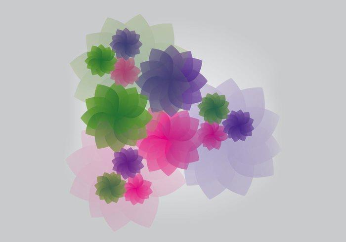 violet verde ornaments Magenta illustrator flowers flower color background