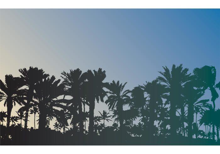 vector background vacation paradise Palm vector palm trees palm Outdoor nature landscape Escape coast calm beautiful
