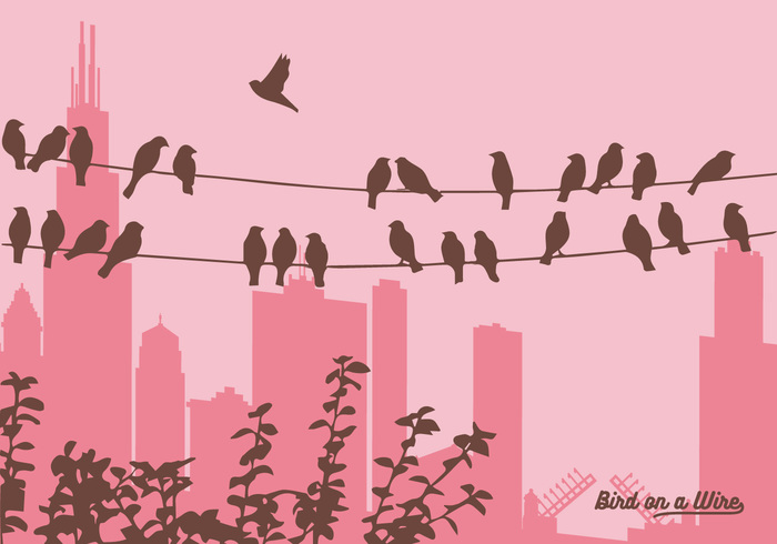 21id3faemwt1l16 Vector Birds on a Wire