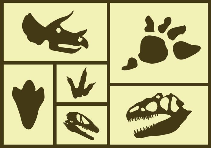 wildlife wild skull silhouette reptile Raptor prehistoric predator paw large isolated huge graphic gigantic footprint dinosaur footprints dinosaur footprint dinosaur claws animal ancient