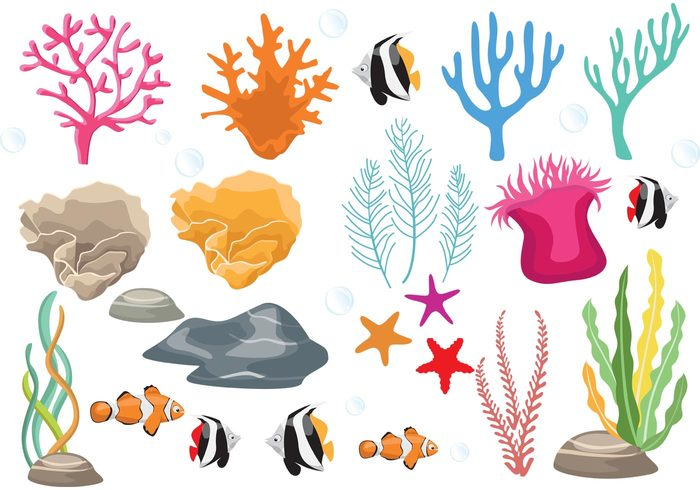 Coral Reef with Fish Vectors 121404 - WeLoveSoLo