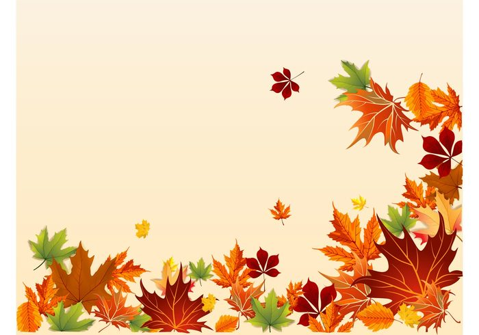 trees seasons seasonal plants nature leaves layout frame decorations background autumn