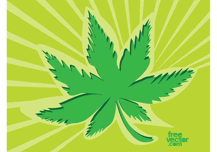 weed Stoned sticker Medical marijuana Marijuana logo icon high drug cartoon Cannabis indica cannabis