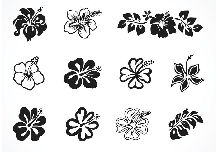 woman vector vacation tropical tree tattoo symbol summer sticker stencil stamp silhouette shirt print polynesian flower ornament nature natural leaf island illustration icon hibiscus hawaii green girl garden foliage flower floral fashion fabric design decoration clothing blossom black beauty background art arabesque abstract