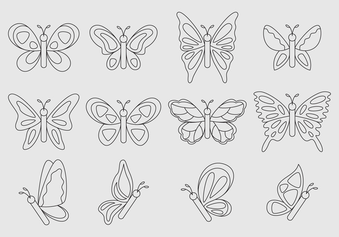 winged wing wildlife wild summer spring outline nature natural moth monarch May line isolated insect fly environment cartoon butterfly cartoon butterfly cartoon butterfly animal