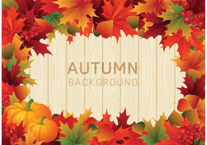 you vintage vector typography turkey thanksgiving border thanksgiving Thankful thank text template sign seasonal season red pumpkin poster postcard outside November nature maple leaves leaves label holiday harvest greeting graphic Fall design decorative decoration day Conceptual concept celebration card bokeh blurry blurred blur background autumn abstract