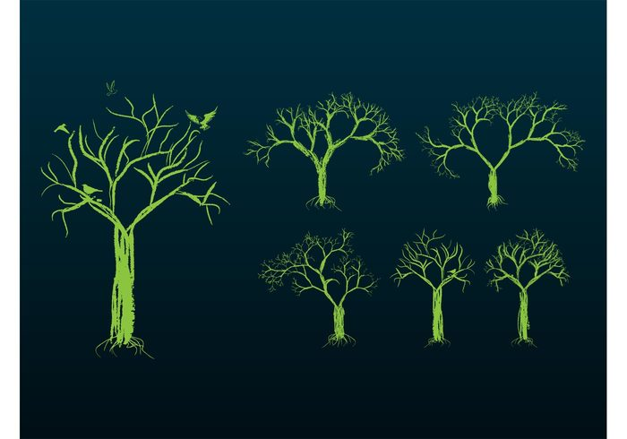 twigs trees sketches plants park organic nature hand drawn forest ecology eco branches birds animals