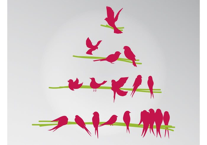 wildlife twigs triangle tree spring singing Sing silhouettes nature ecology branches birds animals