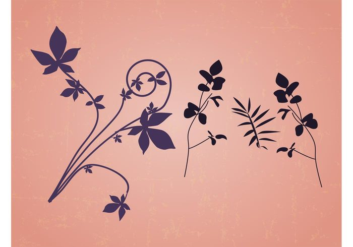 stylized Simplified silhouette plants petals Nature Vectors natural minimal leaves flowers blossom bloom beauty beautiful