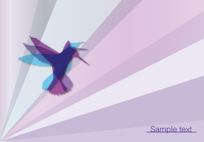 wing wallpaper summer spring sky shape nature life hummingbird flying creature creative Colibri birdnature background birdnature bird background bird background animal abstract