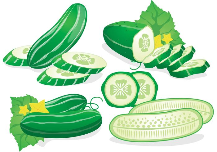 vegetarian vegetable slices sliced salad Refreshment raw plant piece Part organic object nature lifestyle juicy isolated Healthy Health-care green freshness fresh ingredient fresh cucumber fresh food eating Dieting cut Cucumber circle Chopped
