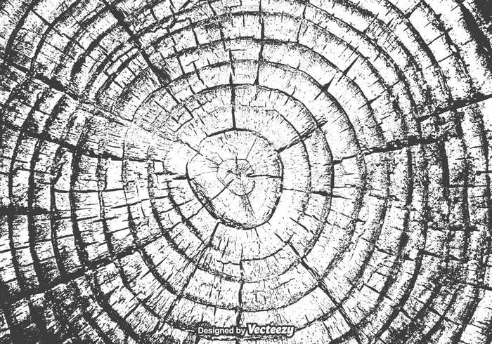 Years wooden wood vector trunk tree rings tree timber textured texture Surface stump striped Split slice shape rough ripple ring plywood plant pattern organic oak nature natural line life history growth forest drawn design cut crack Conceptual CONCENTRIC circular circle background Annual Age abstract
