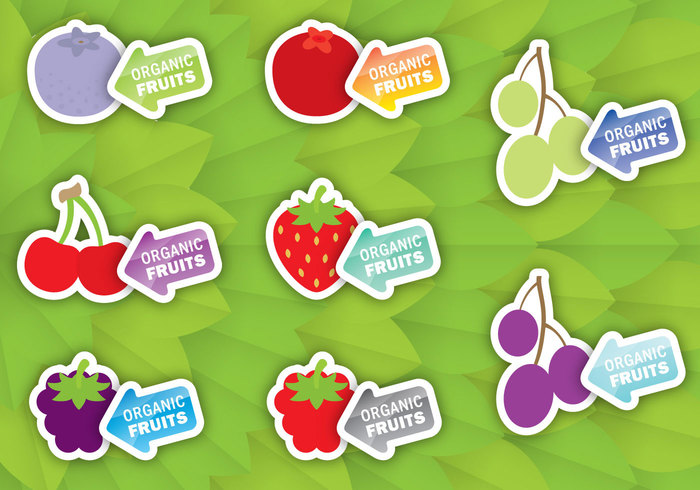 template tag tab strawberry sticker sign retail raspberry product organic nature natural leaf label Healthy green grapes fruit label fresh food label food ecology eco cranberry cherry Blackberry black berry label black berry Biological bio berries badge