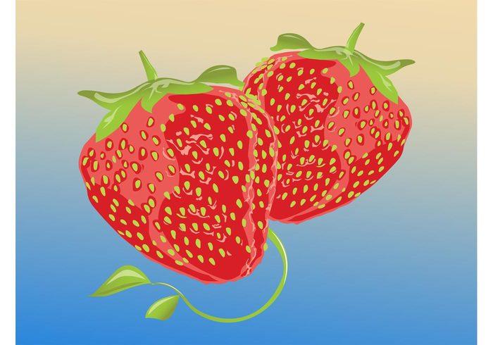 vitamin swirls strawberry stem seeds Ripe leave Healthy fruits fresh food eat dessert cartoon