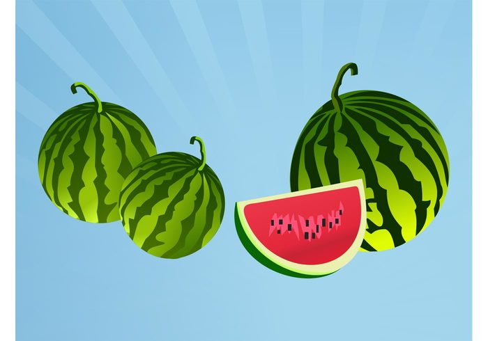 Watermelon vectors vitamins Tasty sweet stripes slice seeds Ripe meal logos icons Healthy fruits food dessert Delicacy
