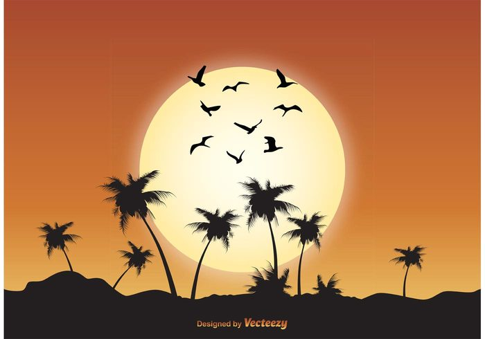 wings wildlife white vector vacation tropical scene tropical town symbol Soar silhouettes season scenic scene poultry peaceful palm tree outdoors outdoor scene ocean nature migrating many life isolated illustration group graphic Geese formation fly flock of birds vector flock of birds flock flight drawing design birds bird beautiful animals