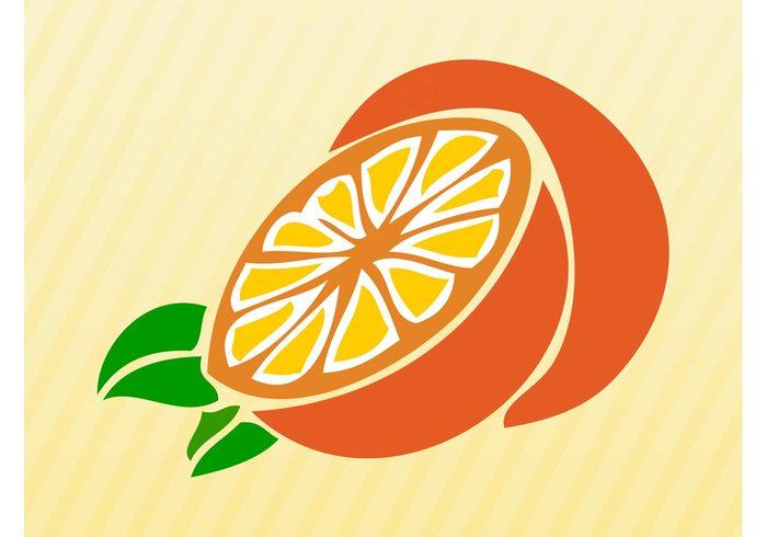 vitamins Orange vector orange juice orange nature logo icon Healthy fruit food Diet comic citrus cartoon