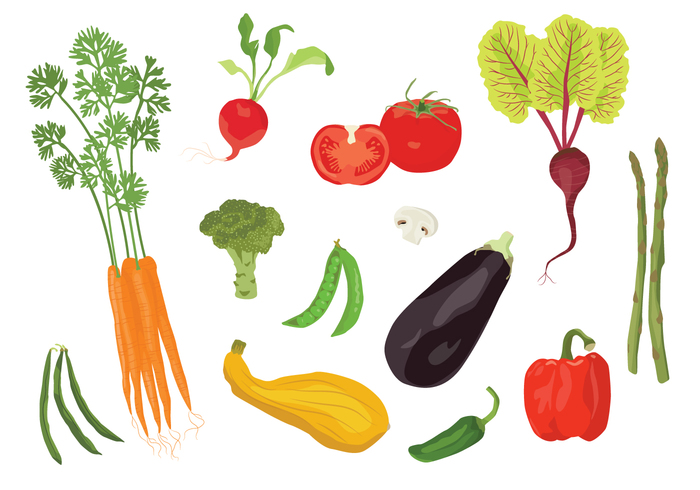 veggie vegetable tomato squash snack root radish pod plant pepper Peas mushroom leaf kitchen hot Healthy harvest grow green hot pepper garden food eggplant carrot bunch broccoli bell Beat asparagus