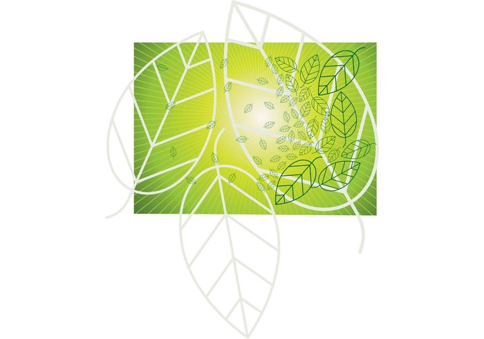 29lbbs0ixdys042 Leaf Vector Graphics