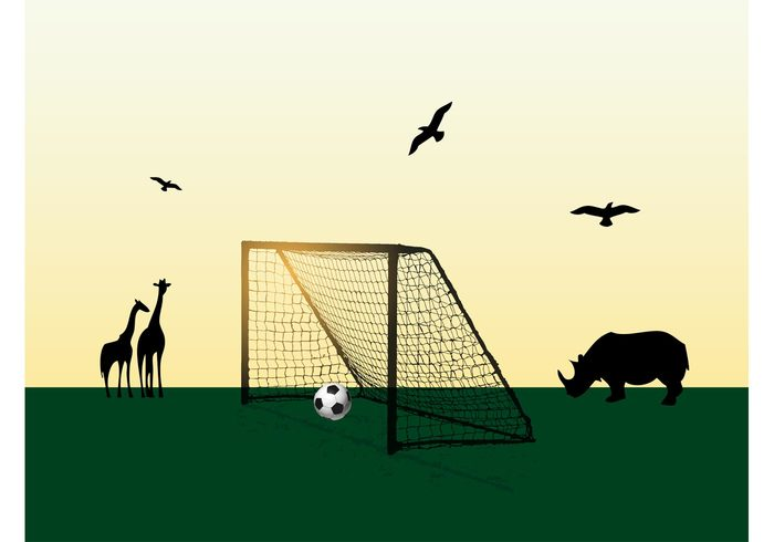 wildlife sunny sport soccer silhouettes safari rhino grass giraffes game field door birds ball animals