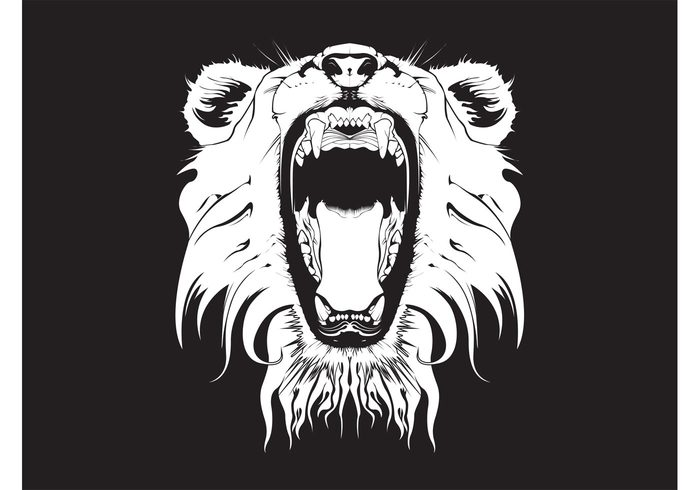 Wild car wallpaper roar nature mouth lion head fauna ears black and white Big cat background animal angry