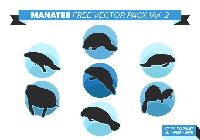 young wildlife wild white vector swimming Single silhouette sea picture ocean nature marine manatees manatee mammal life isolated illustration Herbivorous gray graphic funny fun florida fat Endangered drawing cute cow character cartoon calf black background artwork art Aquatic animal Alone adorable