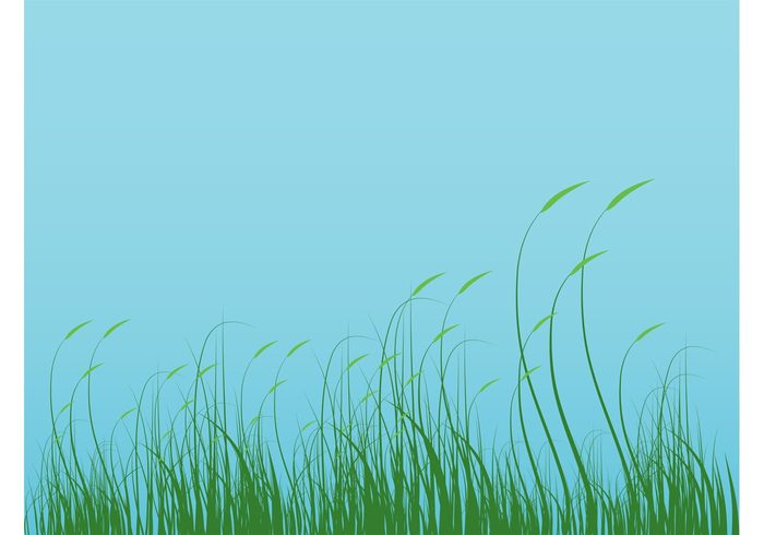 Stems plants pattern organic nature vector natural meadow leaves landscape field decoration background backdrop