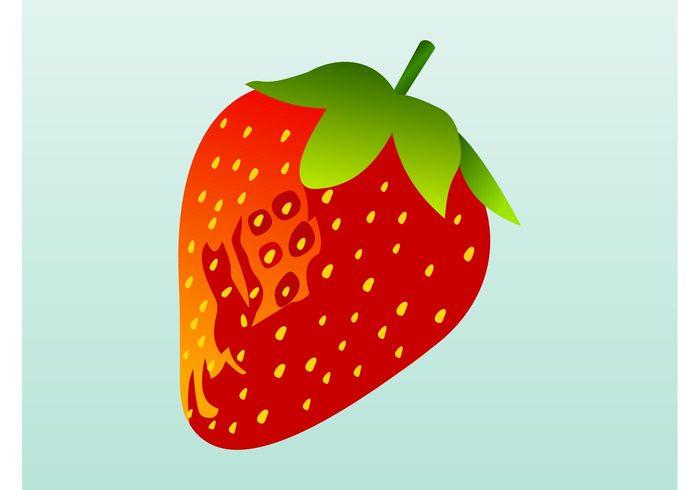 shiny seeds plant nature meal logo leaves Healthy health glossy fruit food eat dessert comic cartoon