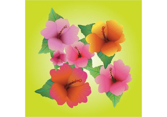 vacation tropical travel tourist Textile summer spring party island Hula holiday hibiscus hawaii flower floral colorful blossom beautiful background aloha