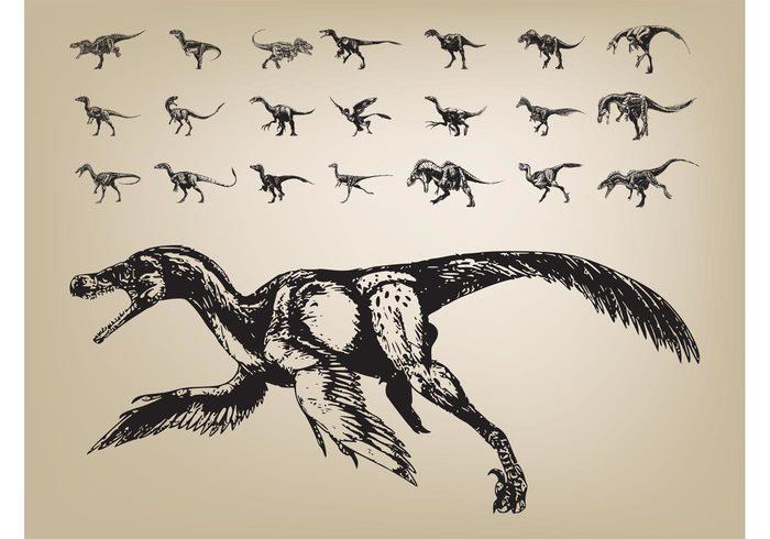 Tails science Reptiles prehistoric Paleontology nature hand drawn Extinct Dinosaurs dinosaur animals