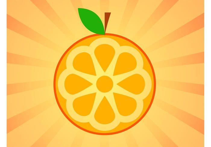 Vitamin c vitamin Tasty taste Orange vector orange juice orange marmalade Healthy health fruit food icon Fibers