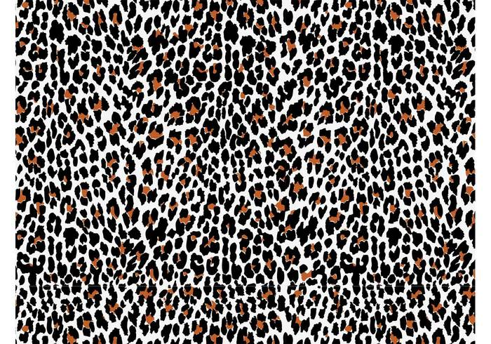 wallpaper skin seamless pattern nature leopard fur fauna fashion fabric Clothing print Big cat background Backdrop image animal
