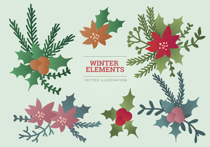winter flowers winter elements winter collection winter tree set poinsettia objects mistletoe holly elements collection christmas flower Christmas Decorations christmas branches