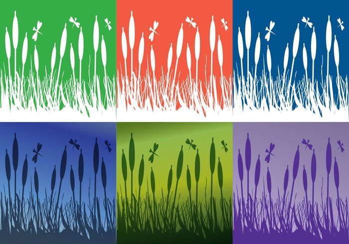 swamp summer spring seedlings season scene reeds plants plant picture Outdoor nature natural meadow light landscape image illustration growth grow green grass graphic freshness fresh field environment ecology earth dragonfly design day color cane bright beauty beautiful background abstract