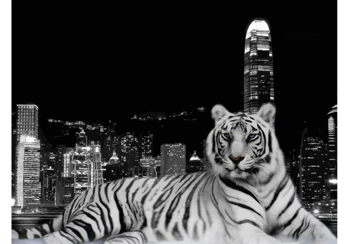 wallpaper urban tiger skyscrapers nightlife night Lying lights cool city scape city bright background animal