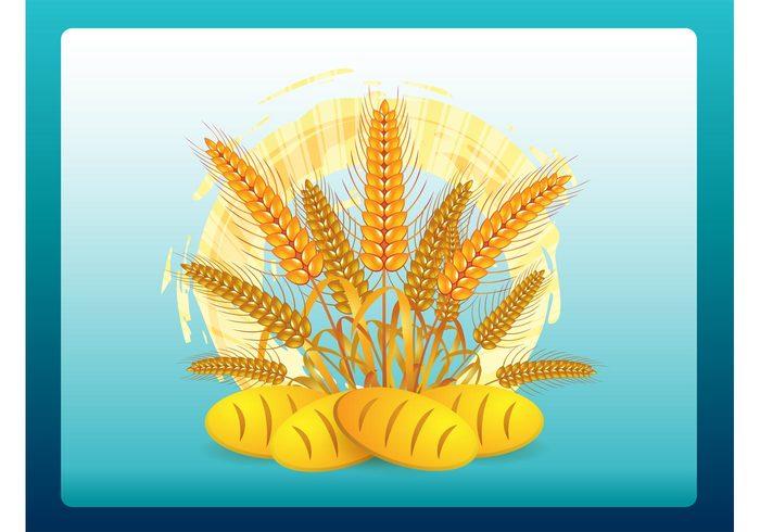 Wheat vectors Stems plants Loaves Loaf grains food farming farm Edible bread bakery agriculture