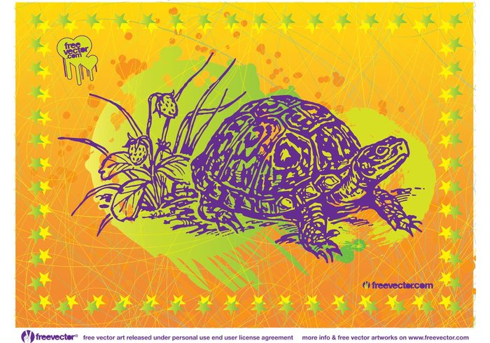 turtle tropical Tortoise stars Slow shell reptile plants nature monster grunge engraving Crawling animal