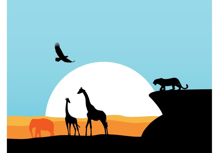 wildlife wilderness wild wallpaper sunset sunrise silhouettes predator giraffes fly fauna elephant eagle bird Big cat background african