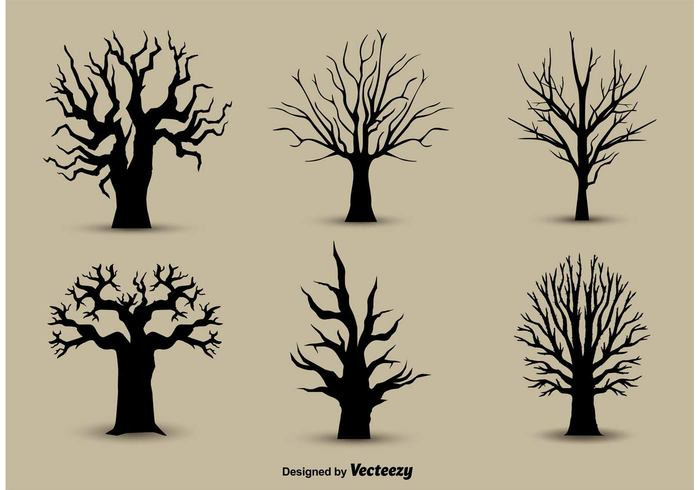 trunk silhouette seasonal plant outline Outdoor old oak nature lonely line isolated image forest environment dry drawing deciduous dead branch black Bare background autumn Alone