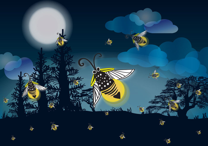 wildlife vector ultraviolet turquoise symbol science print outside outdoors nature mystical landscape mystical modern meadow marshes magic lightning light insect illustration icon hexapod hand greeting green glowworm glowing forest follow flyer floating Flier firefly fireflies firebug fire fairy evening effect dreams drawn drawing dots design cartoon card bugs bug bright blue Beetles background animal