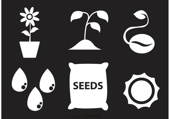 water drop water drip water tree Sun flower sun sprouting seed seeds seedling seed packet seed icon seed plant organic nature harvest growing grow gardening garden icon garden farming farm