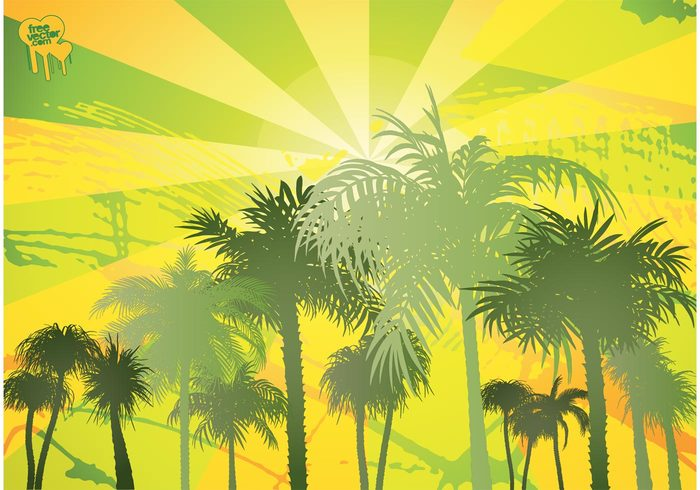 vacation trunk tropical tree travel sunny paradise Palm vector palm trees palm nature natural leaf exotic contour coconut